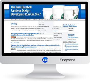 Blueball Snapshot - The sleek minimal Sandvox design that's great for any Sandvox site!
